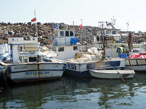 Balıkçı barınakları ranta kurban mı edilecek?
