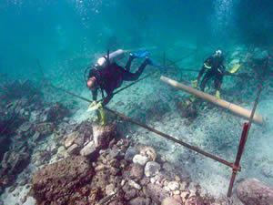 Vasco da Gama'nın filosuna ait gemi batığı bulundu