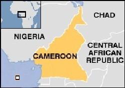 Kamerun'da tekne battı: 30 ölü