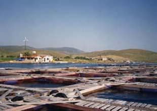 Artık barajlarda balık tesisi kurulmayacak