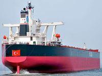 Bakanlık, Türk gemilerinin 'Gri Liste'ye düşmemesi için harekete geçti