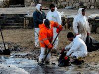 Deniz ve İç Sular Düzenleme Genel Müdürlüğü, 9 deniz temizlik firmasının yetki belgesini iptal etti