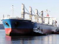M/V CAMPANULA isimli kuruyük gemisi, 6 milyon 600 bin dolara Türk alıcıya satıldı