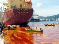 Marmara'yı turuncuya boyayan planktonlar mı, yoksa palmiye yağı taşıyan gemiler mi?
