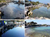 Çeşme kıyılarında meydana gelen petrol kirliliği, 4 ay süren çalışmalar sonucu tamamlandı