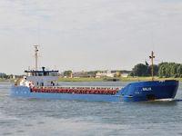 M/V SALIX isimli geminin kaptanı serbest bırakıldı