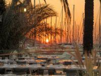 D-Marin Turgutreis Yacht Club, 12 sergiye ev sahipliği yapacak