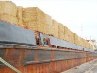 Bulgaristan'dan Türkiye'ye saman ithalatı başladı
