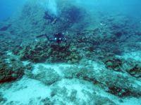 Beylikdüzü'nde 8 gemi enkazı bulundu