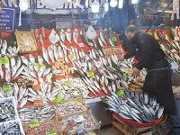 Balık fiyatları düşmedi, uzmanlar avcılığa dikkat çekti