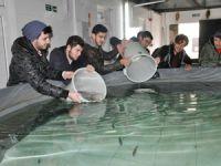 Ege Üniversitesi Su Ürünleri Fakültesi öğrencileri uygulamalı eğitim aldı