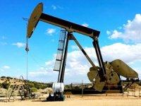 TPAO, dört yeni petrol arama ruhsatı için başvuruda bulundu
