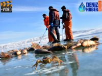 Muş'taki donan gölde testere ile balık avlıyorlar