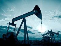 TPAO, 4 adet petrol arama ruhsatı başvurusu yaptı