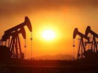 TPAO Siirt ve Niğde'de petrol arayacak