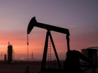TPAO ve Era'nın petrol arama talepleri reddedildi