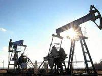 TPAO iki şehirde petrol aramak için başvuru yaptı