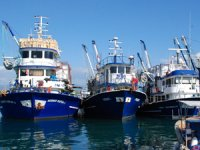 Balıkçılar av sezonuna 'Vira Bismillah' diyor