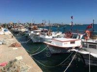 Mersin Taşucu Limanı'nda uyuşturucu operasyonu