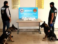 Mersin Limanı'nda uyuşturucu operasyonu