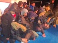 Bodrum'da 10 kişilik teknede 44 kaçak göçmen yakalandı