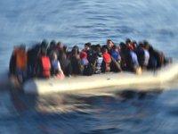 Edirne'de 41 düzensiz göçmen yakalandı