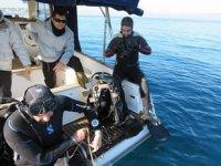 Burhaniye ve Gömeç, dalış turizmine açılacak