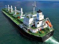 Marinsa Denizcilik, 5 gemisini satışa çıkardı