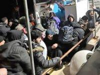 Bodrum'da balıkçı teknesinde 46 kaçak göçmen yakalandı