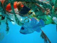Denizlere her yıl 8 milyon ton plastik karışıyor
