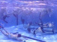 Kocaeli Deniz Yıldızları Spor Kulübü, yine şampiyonluğu hedefliyor