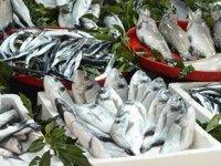 Tezgahlarda balık çeşitliliğinin son günleri yaşanıyor