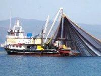 Kocaman Balıkçılık'tan yapay resif uygulamasına destek geldi