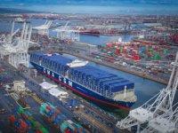 YILPORT, COSCO'ya ait Long Beach Konteyner Terminali satın almak için teklif sundu