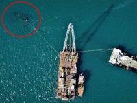 Hayalet gemi 'Bereket'i sökmek için deniz üzerine vinç kuruldu
