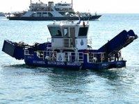 İBB'nin deniz yüzeyi temizleme ekiplerine yunuslar eşlik etti