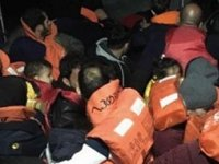 Didim'de 43 düzensiz göçmen yakalandı