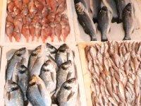 Mersinli balıkçılar, sezonu buruk kapattı