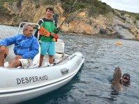 Zıpkınla Balık Avı Türkiye Şampiyonası elemeleri, Bodrum'da yapılacak