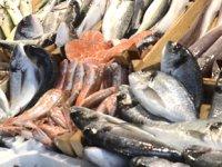 Türkiye'de denizlerde avlanan balık miktarı düştü