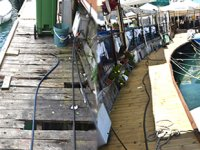 Girne Antik Liman'da bakım onarım işlemleri yapıldı