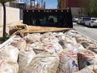 Van'da kaçak avlanılan 5 ton 625 kilo inci kefali ele geçirildi