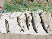 Adıyaman'da av yasağına uymayanlara 9 bin 810 TL para cezası kesildi