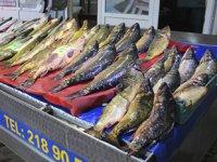 İç sularda balık sezon açıldı, tezgahlar şenlendi
