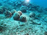 Ayvalık'taki bin yıllık batık gemi sualtı meraklıları tarafından keşfediliyor