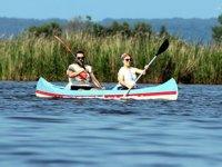 Yerli ve yabancı turistler, longoz ormanlarında kano keyfi yapıyor