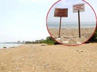 Mezitli Belediyesi, 'Davultepe 100. Yıl Plajı Planı'na itiraz etti