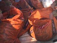 Kaçak balık avlayanlara 172 bin 568 TL para cezası kesildi