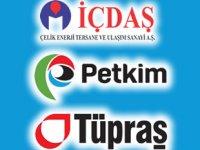 İçdaş, Petkim ve Tüpraş'a 'Dış Ticaret Sermaye Şirketi' statüsü verildi