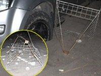 Caretta carettaların üreme alanında drift atan sürücüye 60 bin TL ceza verildi